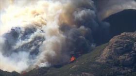 Incendio en California. Crisis migratoria. Atrocidades israelíes