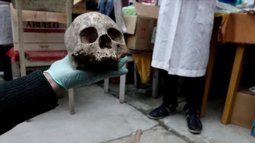 Uno de los cráneos hallados en una necrópolis en el departamento de La Paz, Bolivia, 12 de noviembre de 2018. (Foto: Reuters)