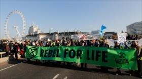 Ecologistas británicos cortan puentes de centro de Londres