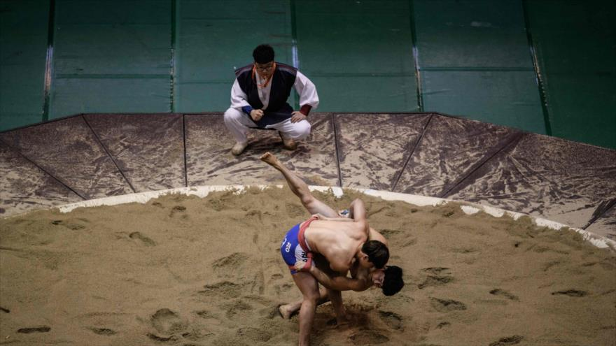 Los luchadores de ssireum compiten en una ronda clasificatoria en la ciudad de Andong (Corea del sur) , 19 de noviembre de 2018, (Foto:AFP)