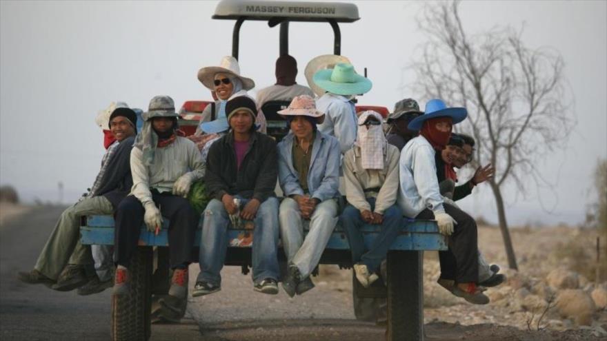 'Israel somete a trabajadores tailandeses a abusos generalizados'