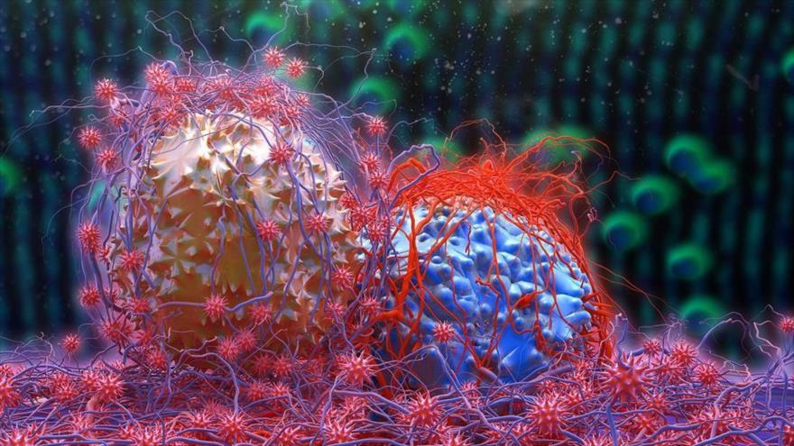 Desarrollan un medicamento 2200 veces más potente en el tratamiento contra el cáncer.