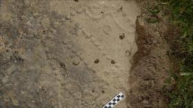 Descubren en Azerbaiyán un juego de mesa de hace 4 mil años