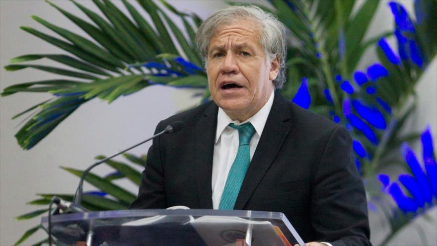 Secretario general de la OEA, Luis Almagro, en Santo Domingo, capital de la República Dominicana, 28 agosto 2018 (Foto: AFP)