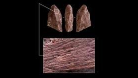 Hallan en Rusia 'lápiz' prehistórico de 50 000 años de antiguedad
