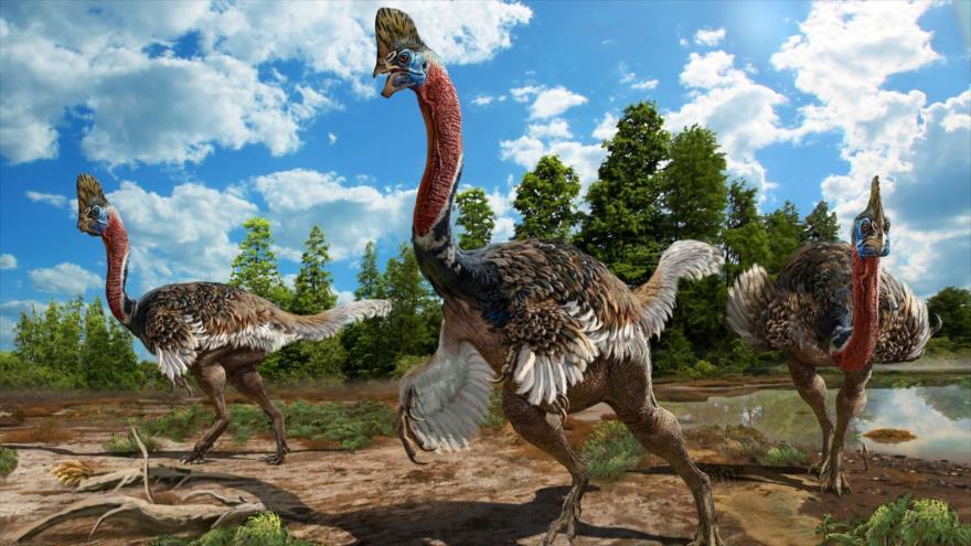 Una reconstrucción artística de Corythoraptor jacobsi.