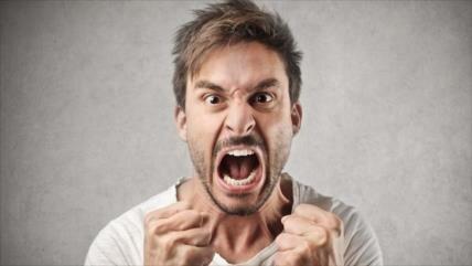 Identifican el 'gen guerrero', responsable de conductas agresivas