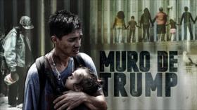 Detrás de la Razón: ¿Por qué Trump no le cobra al Chapo la construcción del muro para frenar invasión?