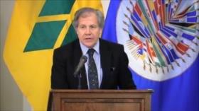Uruguay de cara a un año electoral