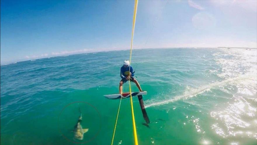 Vídeo: Surfista se estrella con un tiburón en pleno entrenamiento | HISPANTV