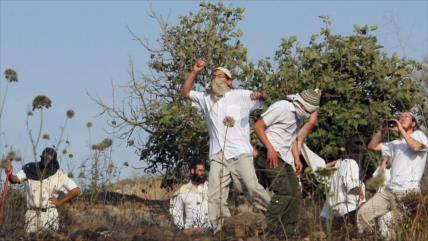 ONU condena ataque a pedradas de colonos a premier palestino