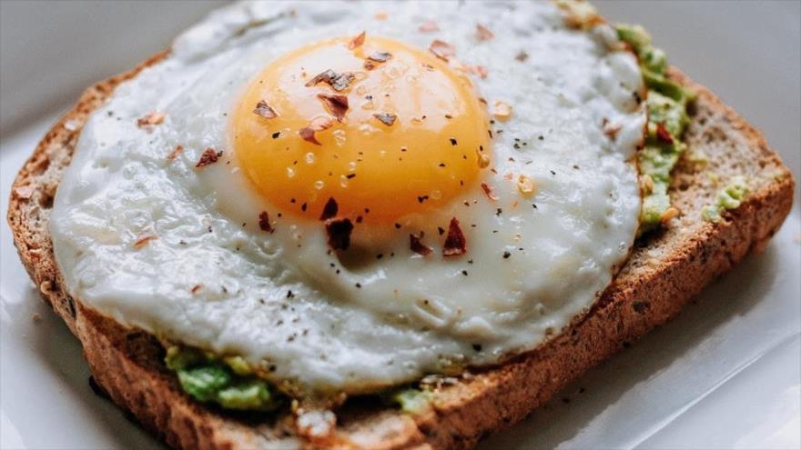 Comer un huevo al día reduciría el riesgo de diabetes tipo 2 | HISPANTV