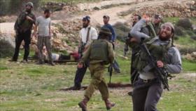 Ataques de colonos israelíes a palestinos se triplicaron en 2018