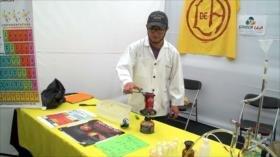 Ciencia en Chile: escaso presupuesto y falta de proyecto nacional