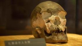 Hallan un cráneo de hace 10 mil años en frontera norte de China