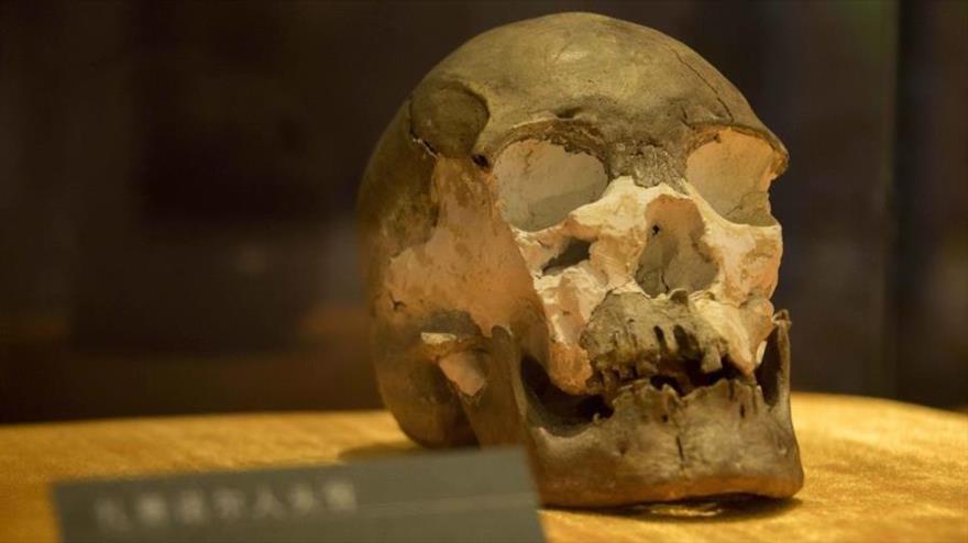 Hallan un cráneo de hace 10 mil años en frontera norte de China   HISPANTV