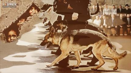 Sionismo: Sobre provocaciones y perros de la guerra