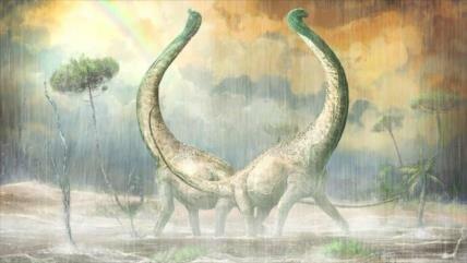 Hallan en África un titanosaurio con un corazón en su cola