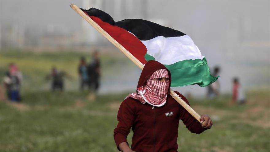 Un manifestante palestino en la Franja de Gaza, 15 de febrero de 2019. (Fuente: AFP)
