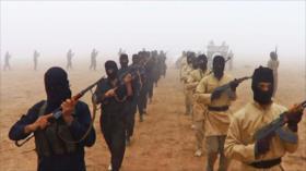 """""""EEUU busca reavivar a Daesh en Irak con liberación de takfiríes"""""""