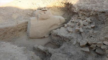 Hallan en Egipto esfinge con testa de carnero de unos 3500 años