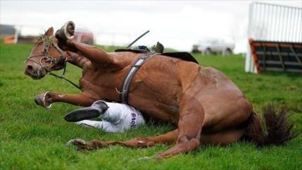 Fotos: Un caballo de carreras aplasta a su jinete en un partido