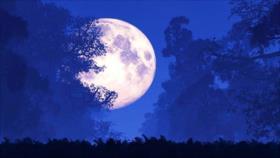 La 'luna de gusano', superluna del primer día de primavera boreal