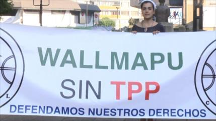 Tratado TTP-11 vulneraría soberanía chilena