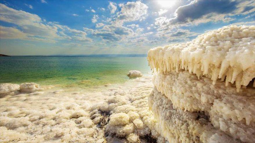 Hallan uno de los ecosistemas más extremos del planeta bajo el lecho del mar Muerto, cuyas aguas son casi 10 veces más saladas que la del océano.