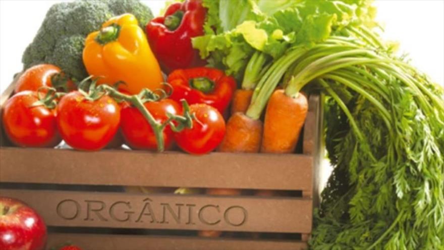 Cajón con algunas verduras orgánicas.