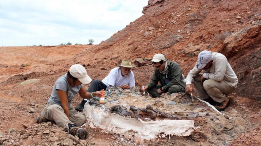 Investigadores estudian el cementerio descubierto de dinosaurios de 220 millones de años, provincia argentina de San Juan.