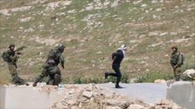 Vídeo: Soldados israelíes disparan a menor palestino maniatado