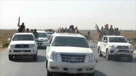 Amplias deserciones en las filas de Fuerzas Democráticas Sirias
