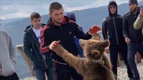 Vídeo: Un luchador ruso pelea con un oso, 'viejo amigo' suyo