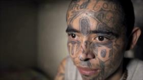 Directores de varios países acuden a muestra de cine en Guatemala