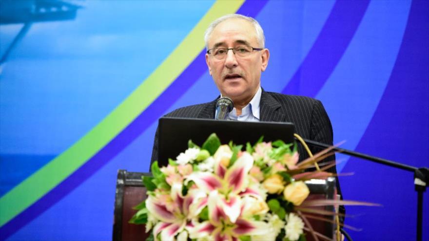 El viceministro iraní de Petróleo, Amir Hosein Zamaninia.