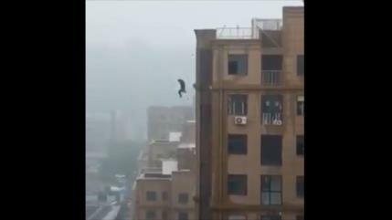 Vídeo: Un indio muere al intentar tomarse un selfi