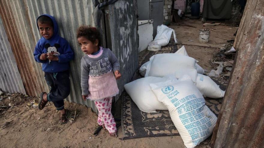 ONU: Un millón de civiles en Gaza pueden no tener comida en junio | HISPANTV