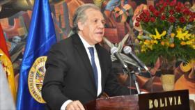 """Almagro califica de """"discriminatorio"""" unas elecciones sin Morales"""