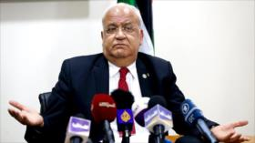 Palestina: Paz no puede lograrse entre la víctima y el ejecutor