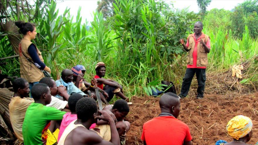 Decapitan a una misionera española en la República Centroafricana | HISPANTV
