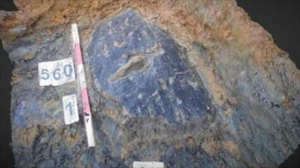 Descubren un escudo de la Edad de Hierro en el Reino Unido