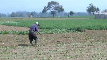 El cambio climático afecta a campesinos y pescadores de Guatemala