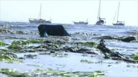 Senegal lucha contra la acumulación de desechos plásticos