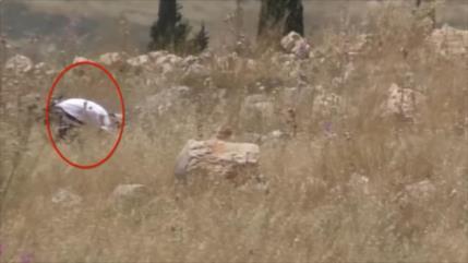Israelíes prenden fuego a tierras agrícolas en el Golán de Siria