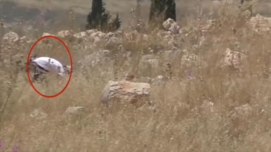 Un colono israelí prende fuego a tierras palestinas.