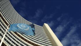 AIEA reconoce a Palestina como un Estado
