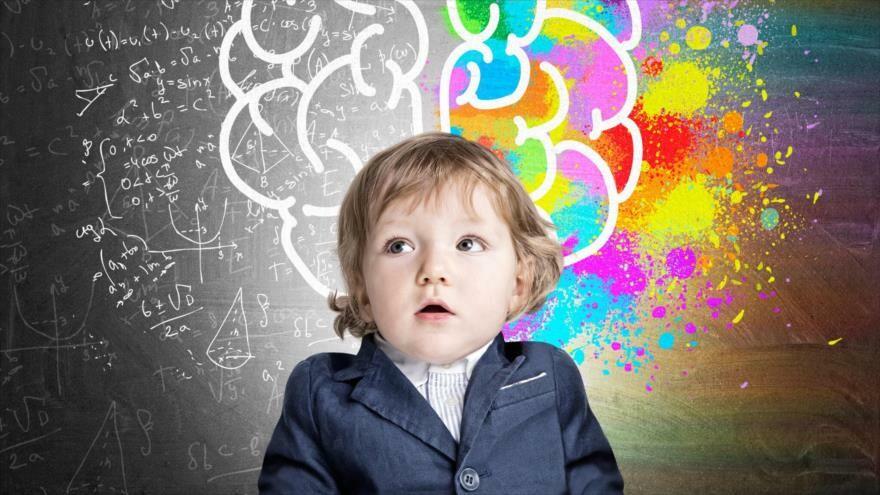 El cerebro consume la mitad de la energía de un niño.