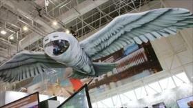 Rusia presenta un nuevo dron espía diseñado en forma de búho