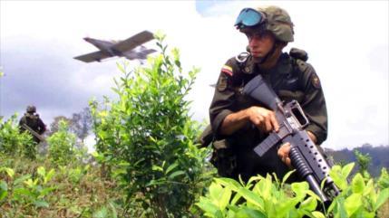 ONU: Colombia y EEUU, primeros en producción y consumo de cocaína